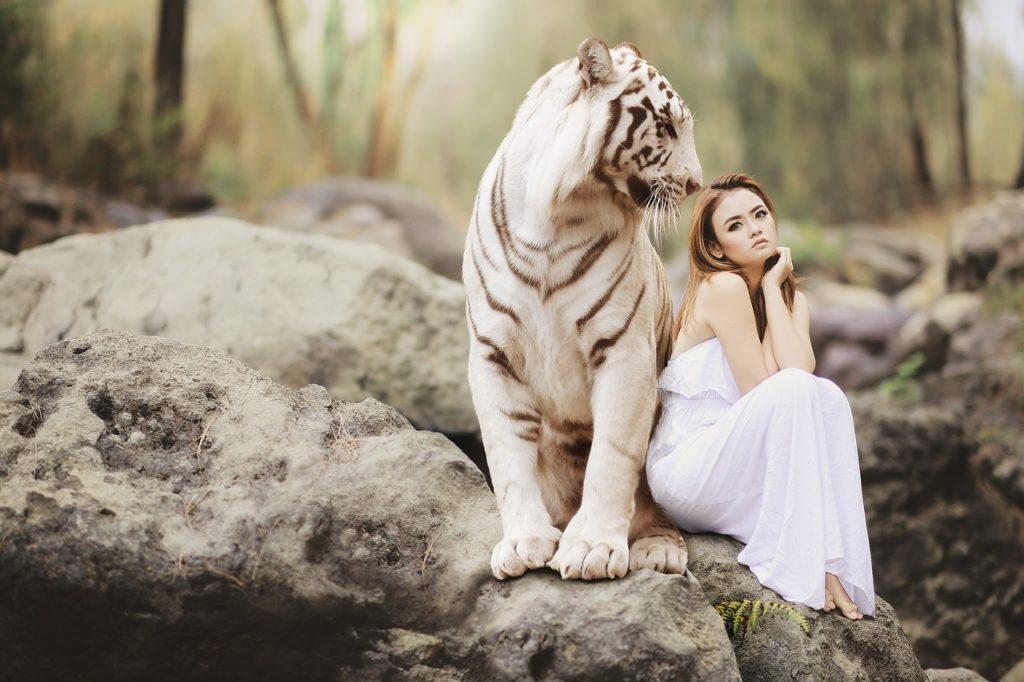 beautiful woman sits next to a white tiger